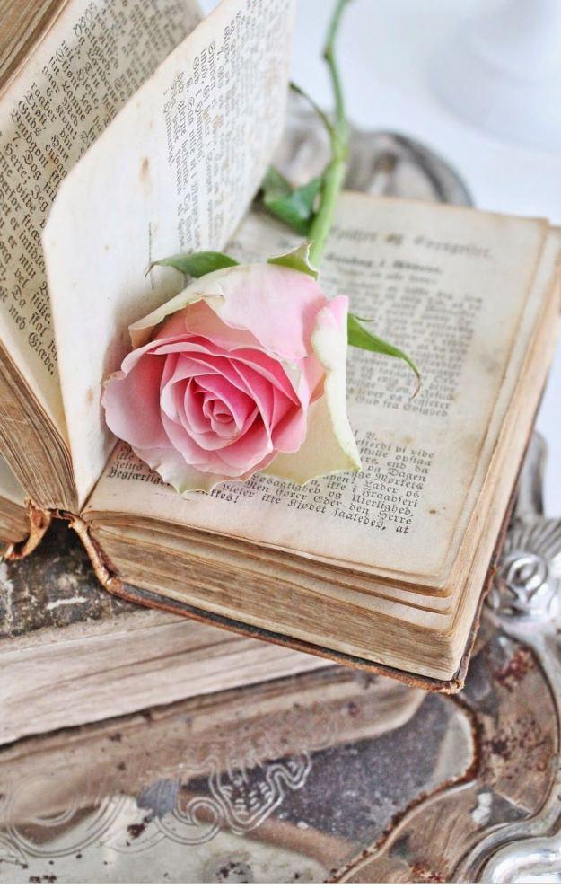 libro san valentin